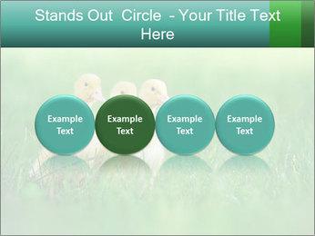 0000081149 PowerPoint Templates - Slide 76