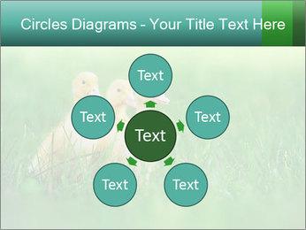 0000081149 PowerPoint Templates - Slide 78
