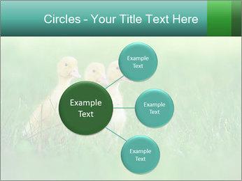 0000081149 PowerPoint Templates - Slide 79