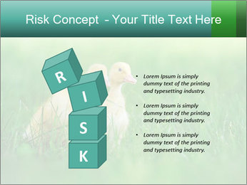 0000081149 PowerPoint Templates - Slide 81