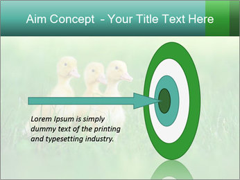 0000081149 PowerPoint Template - Slide 83