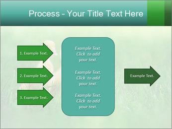 0000081149 PowerPoint Templates - Slide 85