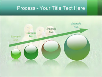 0000081149 PowerPoint Template - Slide 87