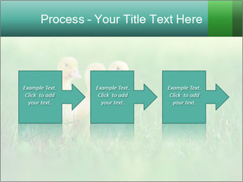 0000081149 PowerPoint Template - Slide 88