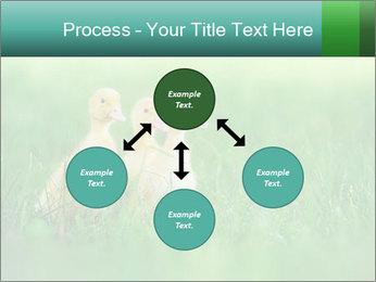 0000081149 PowerPoint Templates - Slide 91