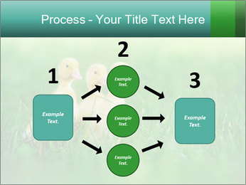 0000081149 PowerPoint Templates - Slide 92