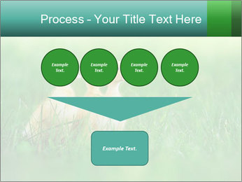 0000081149 PowerPoint Template - Slide 93