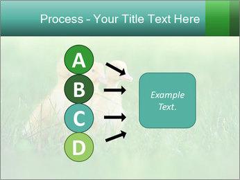 0000081149 PowerPoint Templates - Slide 94
