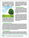 0000081149 Word Template - Page 4