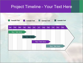 0000081151 PowerPoint Template - Slide 25