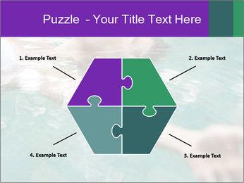 0000081151 PowerPoint Template - Slide 40