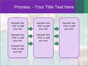 0000081151 PowerPoint Template - Slide 86