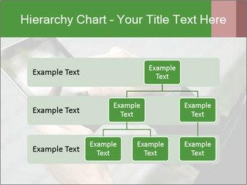 0000081160 PowerPoint Templates - Slide 67