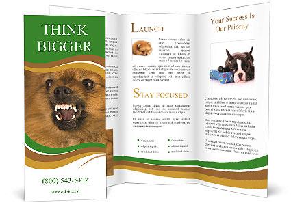 0000081166 Brochure Template