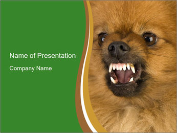 0000081166 PowerPoint Template - Slide 1