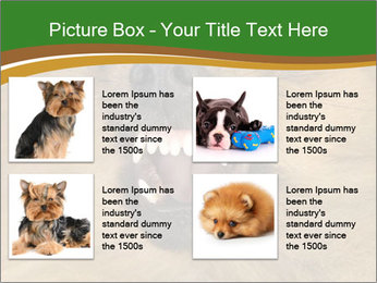 0000081166 PowerPoint Template - Slide 14