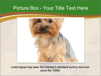 0000081166 PowerPoint Template - Slide 15