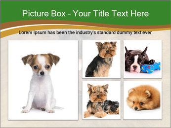 0000081166 PowerPoint Template - Slide 19