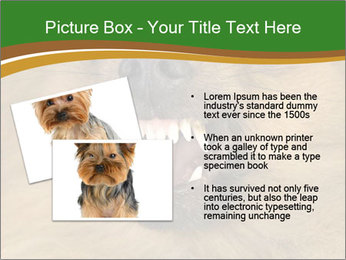 0000081166 PowerPoint Template - Slide 20