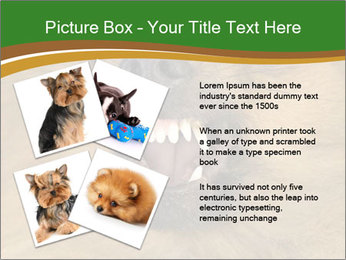0000081166 PowerPoint Template - Slide 23