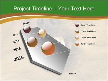 0000081166 PowerPoint Template - Slide 26