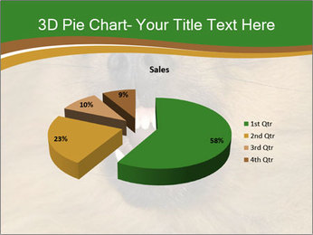 0000081166 PowerPoint Template - Slide 35