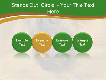 0000081166 PowerPoint Template - Slide 76
