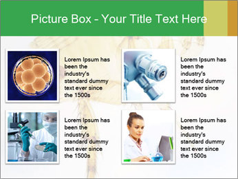 0000081168 PowerPoint Templates - Slide 14