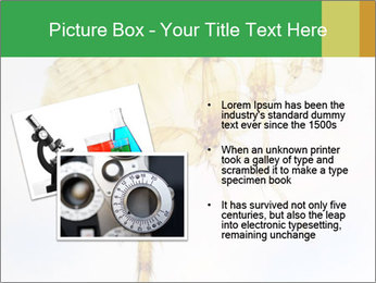 0000081168 PowerPoint Templates - Slide 20