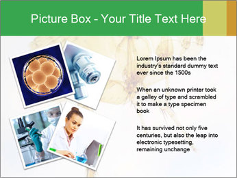 0000081168 PowerPoint Templates - Slide 23