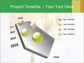 0000081168 PowerPoint Templates - Slide 26