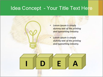 0000081168 PowerPoint Templates - Slide 80