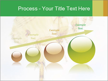 0000081168 PowerPoint Templates - Slide 87