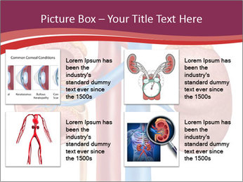 0000081176 PowerPoint Templates - Slide 14