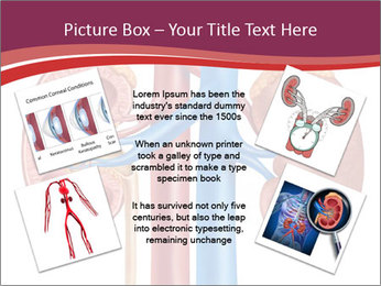 0000081176 PowerPoint Templates - Slide 24
