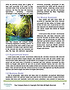 0000081182 Word Template - Page 4