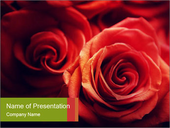 0000081191 PowerPoint Template - Slide 1