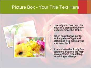 0000081191 PowerPoint Template - Slide 20