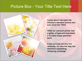 0000081191 PowerPoint Template - Slide 23