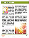 0000081191 Word Template - Page 3