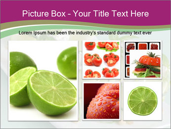 0000081195 PowerPoint Templates - Slide 19