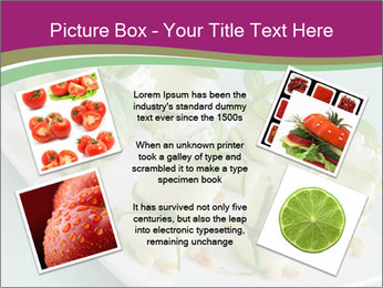 0000081195 PowerPoint Templates - Slide 24
