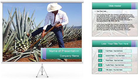 0000081198 PowerPoint Template