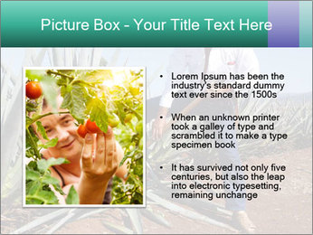 0000081198 PowerPoint Template - Slide 13