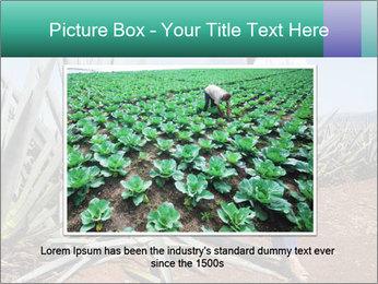 0000081198 PowerPoint Templates - Slide 15