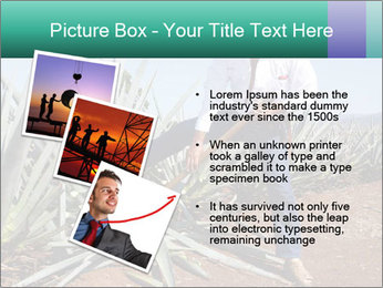 0000081198 PowerPoint Template - Slide 17