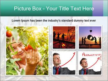 0000081198 PowerPoint Templates - Slide 19