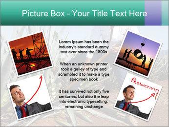 0000081198 PowerPoint Templates - Slide 24