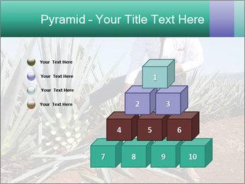 0000081198 PowerPoint Templates - Slide 31