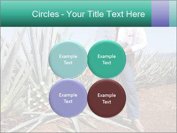 0000081198 PowerPoint Templates - Slide 38